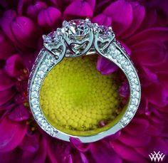 The 'Coeur de Clara Ashley 3' stone engagement ring. Love it!