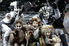 Germany - North Rhine-Westphalia - Koeln Cologne: Musical Dome: Ensemble of the musical 'Cats' (Guest performance of the original London version from 12.11.2008 - 14.12.2008).