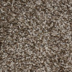 Looptex Mills Irresistible Plush Carpet 12 Ft Wide 777