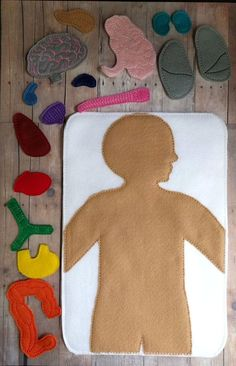 This 17 piece human anatomy play set will inspire and entertain! * The pieces are made of embroidered American made acrylic felt. * In addition to the felt board with embroidered organs, there are 16 separate felt organs th Human Body Crafts, Medical Drawings, Medical Careers, Medical Science, Medical Anatomy, Felt Patterns, Human Anatomy, Anatomy Organs, Drawing For Kids