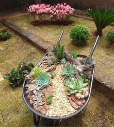 Succulents Garden, Yard Art, Backyard, Exterior, Nature, Plants, Diy, Coffee, Outdoor