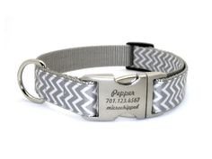 Silver Chevron Personalized Dog Collars http://badasspetz.com/item_1647/Silver-Chevron-Personalized-Dog-Collars.htm