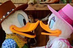 Donald @ Dasiy | Donald and Daisy