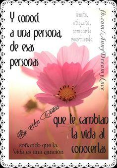 Y conocí a una persona, de esas personas que te cambian la vida al conocerlas, www.facebook.com/AnnyDreamyLove