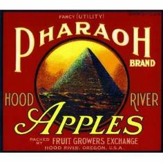 Hood River Oregon DB Duck Apple Fruit Crate Label Art Print