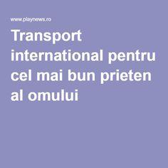 Transport international pentru cel mai bun prieten al omului Transport International, Transportation
