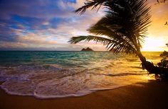 Lune de miel à Hawaï