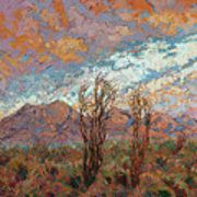 Ocotillo Clouds Poster by Erin Hanson