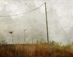 yesterday, today, and tomorrow | by jamie heiden
