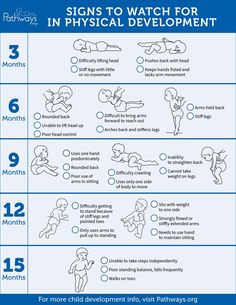 Ensure the best for your child's physical development brochure – Baby Development Tips Baby Development Chart, Physical Development, Toddler Development, Child Development Stages, Child Development Activities, 6 Month Development Milestones, Newborn Development, Prenatal Development, Baby Schedule
