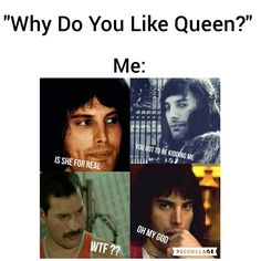Read Roger Taylor from the story QUEEN MEMES by Roger_Hot_Drummer with reads. Freddie Mercury Quotes, Queen Freddie Mercury, Satire, Rainha Do Rock, Queen Lyrics, Queen Meme, I Am A Queen, Queen Queen, Roger Taylor