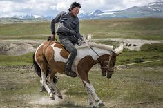 A nomad breaks a wild mare in Mongolia. Image by David Baxendale / Lonely Planet  http://www.lonelyplanet.com/mongolia/travel-tips-and-articles/mongolias-lost-secrets-in-pictures-the-kazakh-horsemen