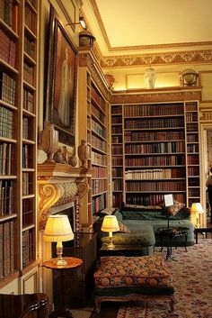 I want a library like this one day.