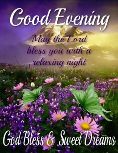 Evening Greetings, Good Night Greetings, Good Night Blessings, Good Night Quotes, Sweet Dreams, Blessed, Lord, Facebook, Friends