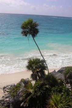 Tulum, Mexico.  When can we go back?