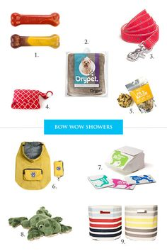 Essential spring items for dogs!