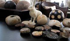 fossils, wooden balls