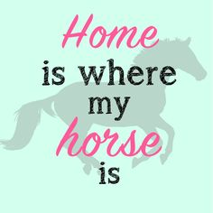 Home is where my horse is Horse Riding Quotes, Horse Riding Tips, Horse Tips, My Horse, Equine Quotes, Equestrian Quotes, Equestrian Style, Cute Horses, Beautiful Horses