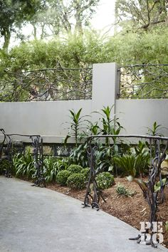 Interior planting design Maroubra Eastern Suburbs Sydney By Pepo