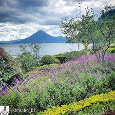 http://OkAtitlan.com  @ishmatic_bz: Good morning from #Panajachel #Lake #Atitlan #ILoveAtitlan #AmoAtitlan #travel #CentralAmerica #Solola #LakeAtitlan