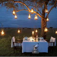 Hurricane lanterns draped from trees creates a warm atmosphere for any wedding event.