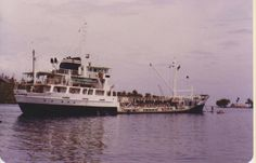 MT Pacific Navigator - Gizo, Solomon Islands. At anchor, with stern-lines fast to palm trees.