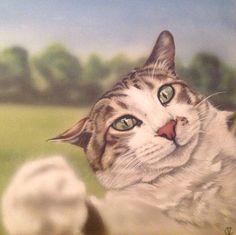 Cat art, cat painting, swiping cat art, cat on canvas painting