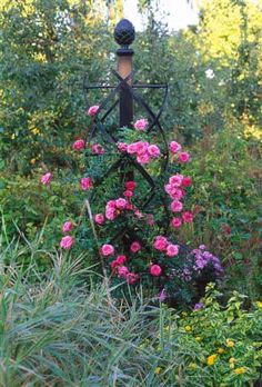 Charleston Garden Trellis, by Classic Garden Elements. These look beautifully constructed, tough enough to handle a rose.