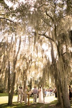 Henk Prinsloo Photography | Up The Creek Farms | Florida | Wedding Venue | Florida | And our oaks for the ceremony