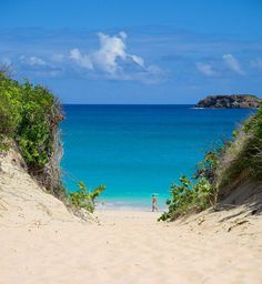 Anse de Grande Saline on St. Barths - 50 of the Best Beaches in the World