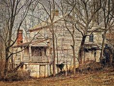house in woods - Szukaj w Google
