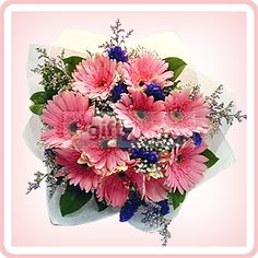 Send Lovely flowers, gift basket, cake, cookies and more birthday gifts delivery in Malaysia.