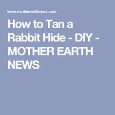 How to Tan a Rabbit Hide - DIY - MOTHER EARTH NEWS