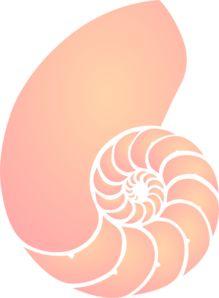 Free Image on Pixabay - Shell, Sea, Orange, Pink, Spiral Sacred Geometry Tattoo, Nautilus Shell, Free Stencils, Pretty Designs, Flower Mandala, Fish Art, Flower Of Life, Color Rosa, British Museum
