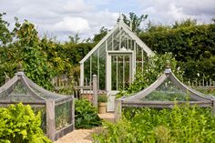 A Scotney greenhouse in a beautiful garden - lovely fruit cages!