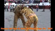 Porrazo del Tigre 2014 Chilpancingo, Gro. II