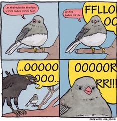 'Annoyed Bird' Memes Are For Anyone Who's Been Rudely Interrupted