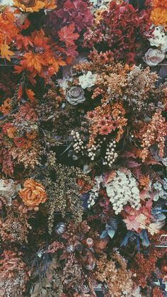 Floral iphone ios android wallpaper — Newsquote