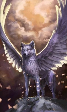 Image result for angel and wolf