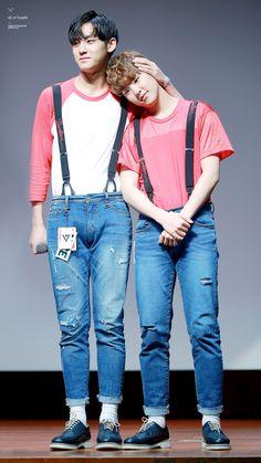 Mingyu and Hoshi