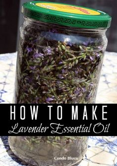 Coconut Oil Uses - How to Make Lavender Essential Oil This isnt an oil, its a tincture, but! this can be done with lots of herbs! 9 Reasons to Use Coconut Oil Daily Coconut Oil Will Set You Free — and Improve Your Health!Coconut Oil Fuels Your Metabolism! Making Essential Oils, Essential Oil Blends, Lavender Essential Oil Uses, Making Oils, Homemade Essential Oils, Pure Essential, Uses For Lavender Plant, Soap Making, Growing Lavender From Seed