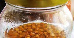 ΕΛΛΗΝΙΚΟ ΑΜΑΡΕΤΟ Δεν υπαρχει πιο αντιπροσωπευτικο φρουτο της ανακυκλωσης στην ζαχαροπλαστικη απο το βερυκοκο.Εκμεταλευεσαι την σαρκα το... Mini Bars, Chana Masala, Cookie Recipes, Drinks, Ethnic Recipes, Desserts, Food, Recipes For Biscuits, Drinking