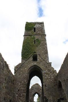 Moor Abbey, Galbally, County Limerick, Ireland