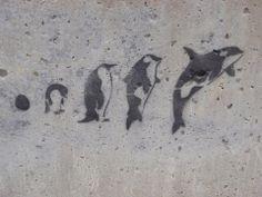 Metamorphosis Art - Penguin to Orca