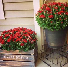 Rustic Metal Bucket and Wood Crate Planters Casas Magnolia, Best Front Doors, Pot Jardin, Porch Decorating, Decorating Ideas, Decor Ideas, Decks And Porches, Fall Porches, Front Porches