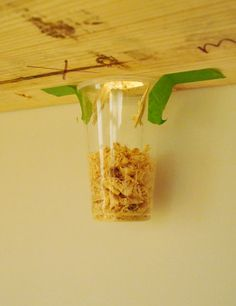 When drilling a hole in wood for cords, etc, tape a cup under to catch wood shavings -- easy cleanup!