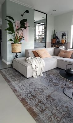 Living Room On A Budget, Small Living Rooms, Living Room Interior, Living Room Designs, Home Interior Design, Living Room Furniture, Dinning Room Wall Decor, Living Room Decor, Paint Colors For Living Room