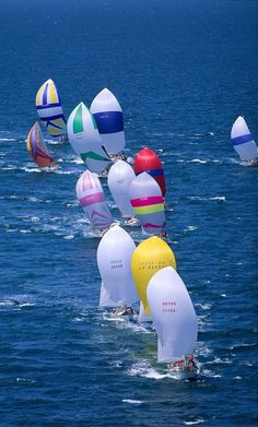multi-colored sail boats!~