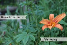 Reason to read no. 3: It is Relaxing