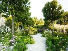 Book Launch: 'The Thoughtful Gardener' by Jinny Blom, Hauser & Wirth London, Tuesday 4 April 6 – 8 pm Formal Gardens, Outdoor Gardens, Landscape Design, Garden Design, Small Yard Landscaping, Garden Borders, Dream Garden, Garden Planning, Garden Inspiration